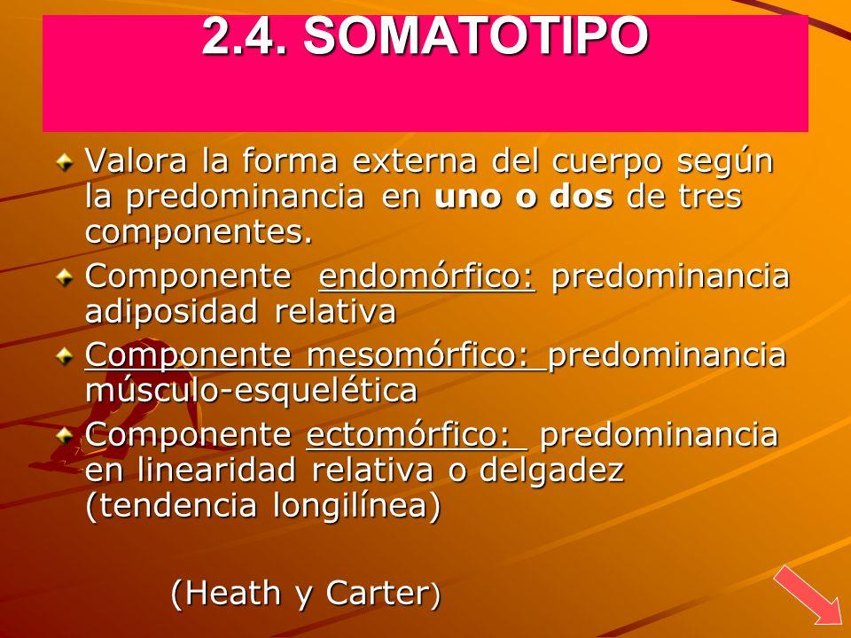 2.4. SOMATOTIPOValora la forma externa del cuerpo según la predominancia en uno o dos de tres componentes.