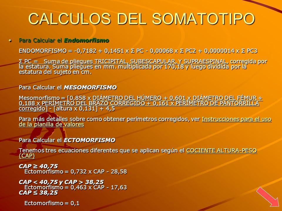 CALCULOS DEL SOMATOTIPO