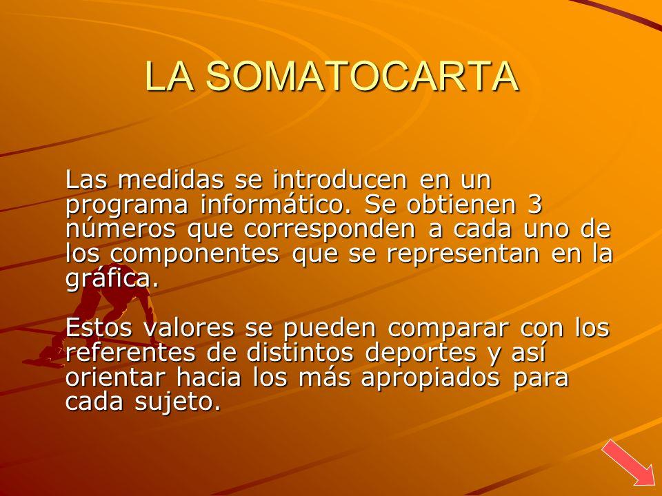 LA SOMATOCARTA