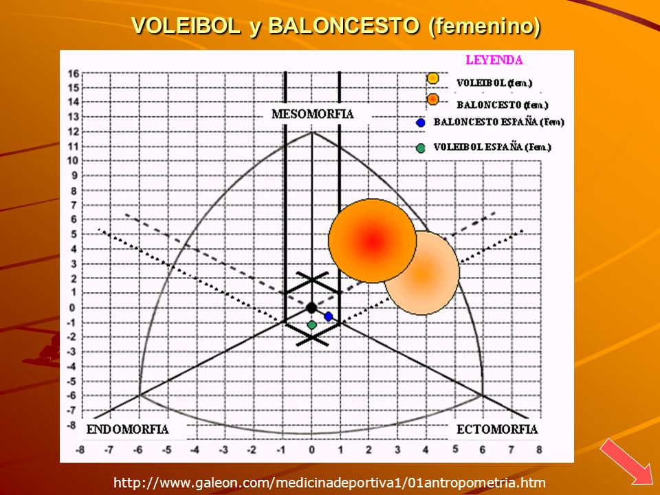VOLEIBOL y BALONCESTO (femenino)