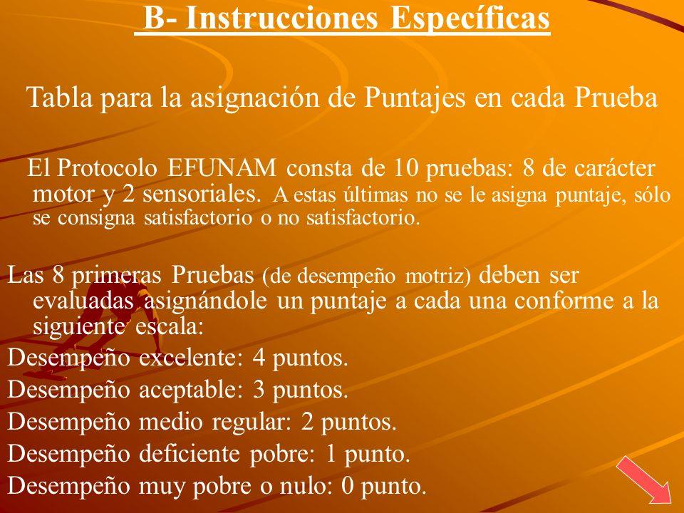 B- Instrucciones Específicas