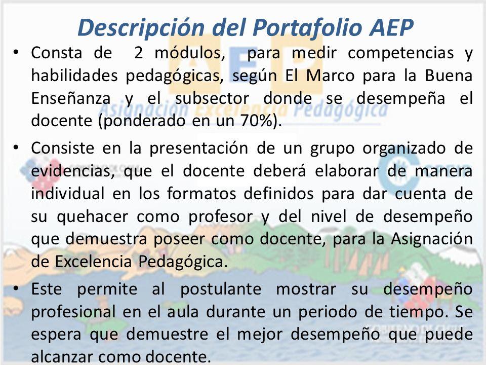 Descripción del Portafolio AEP