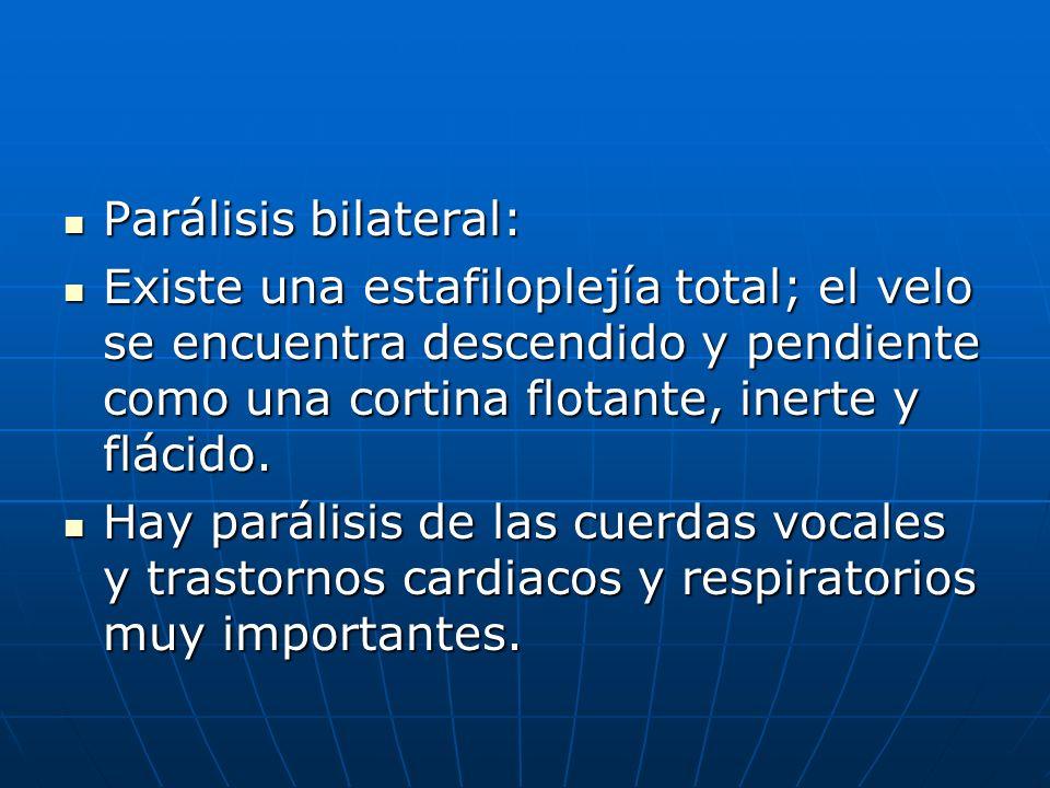 Parálisis bilateral:Existe una estafiloplejía total; el velo se encuentra descendido y pendiente como una cortina flotante, inerte y flácido.