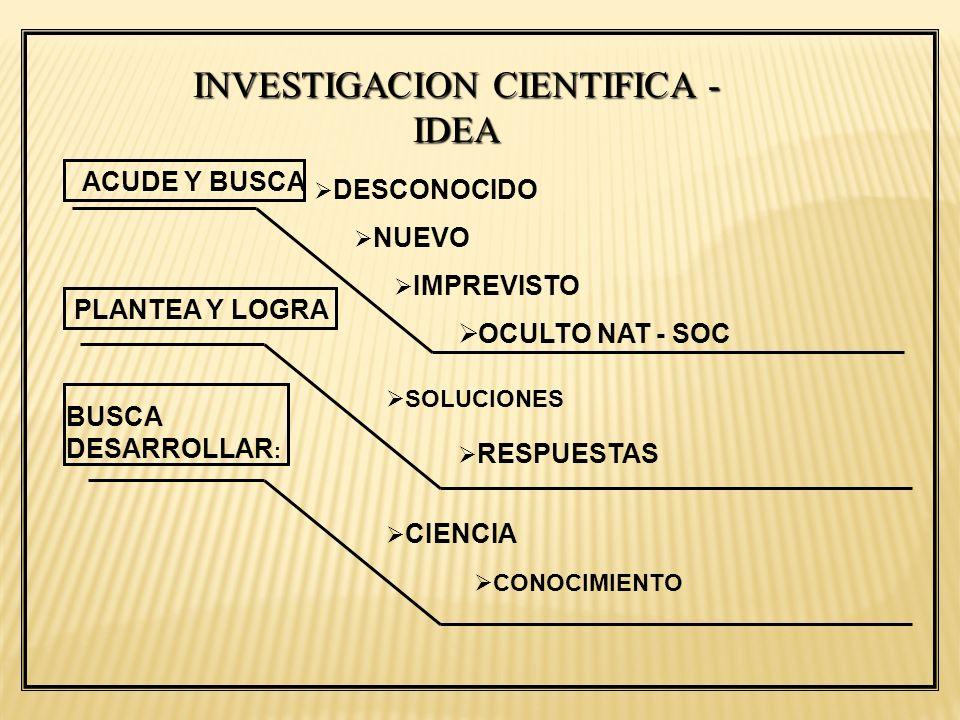 INVESTIGACION CIENTIFICA - IDEA