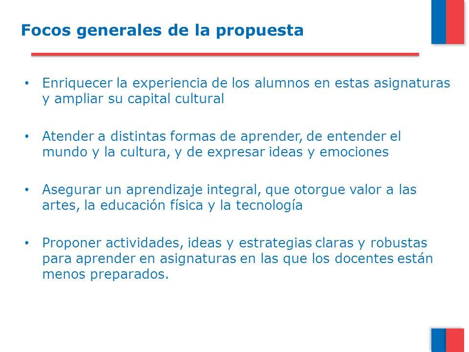 Focos generales de la propuesta