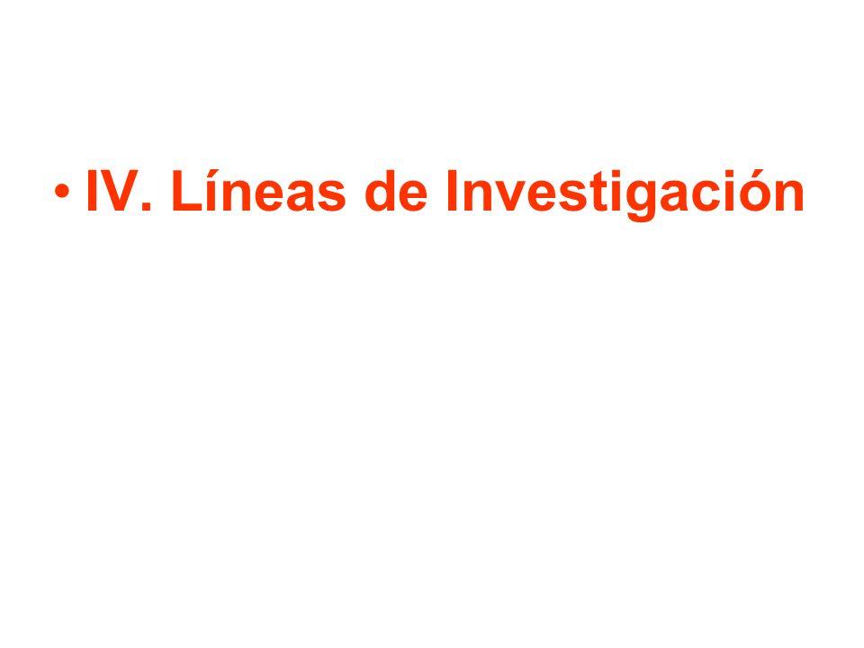 IV. Líneas de Investigación