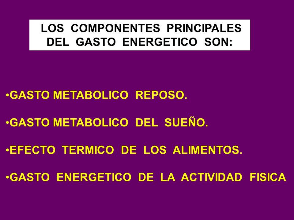 LOS COMPONENTES PRINCIPALES DEL GASTO ENERGETICO SON: