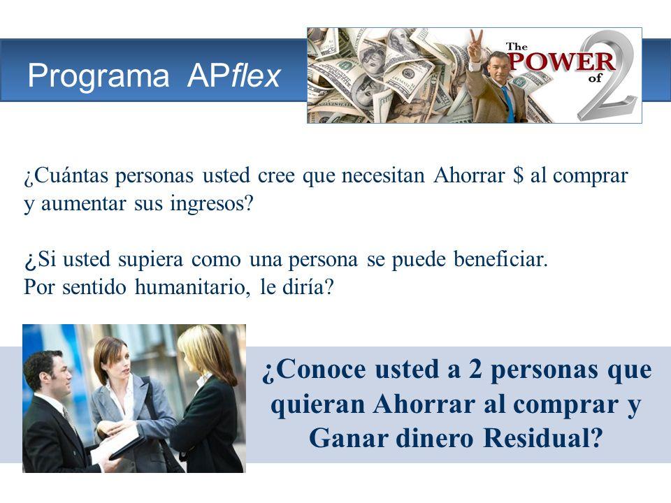 The Company Programa APflex