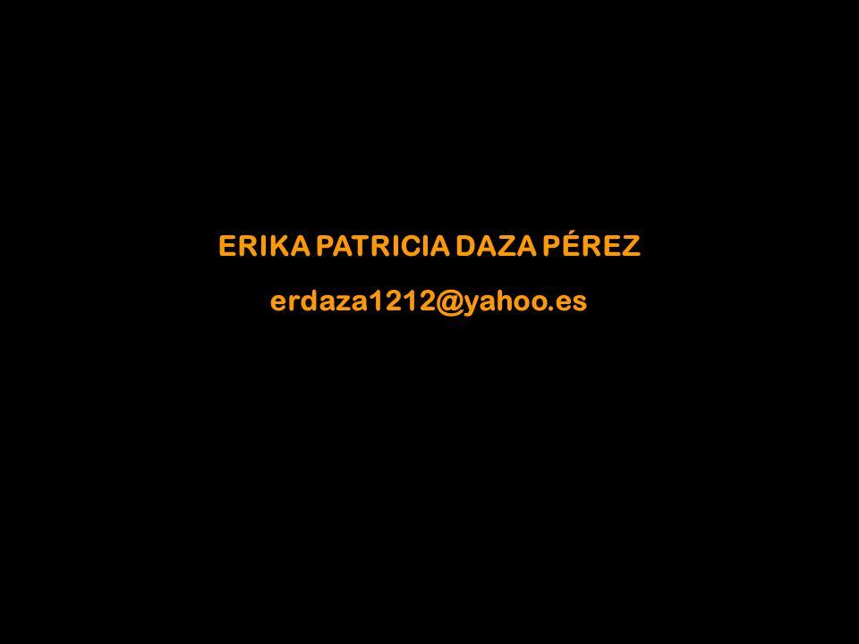 ERIKA PATRICIA DAZA PÉREZ