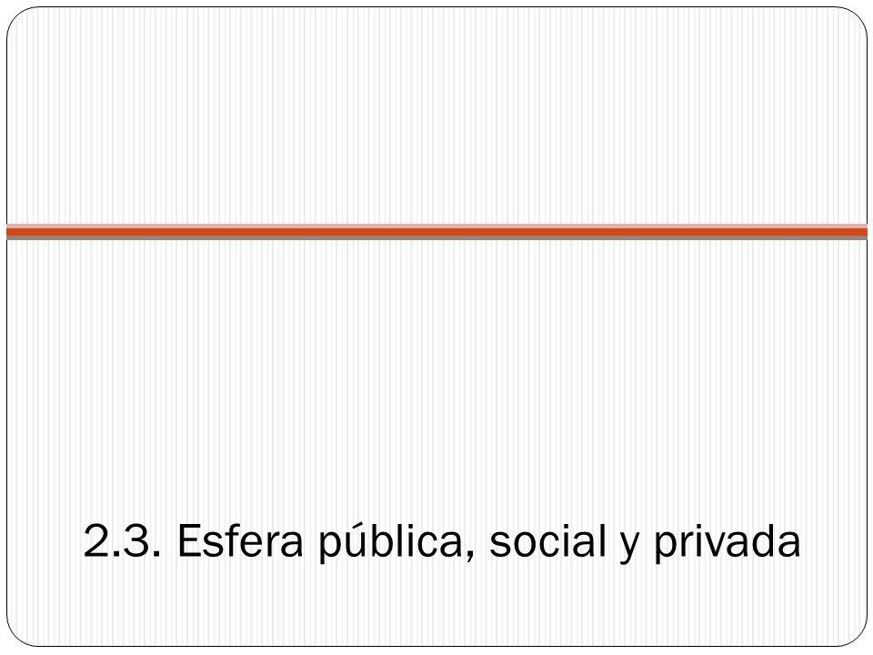 2.3. Esfera pública, social y privada
