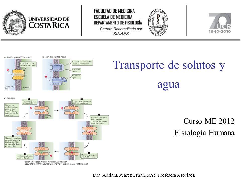 Transporte de solutos y agua