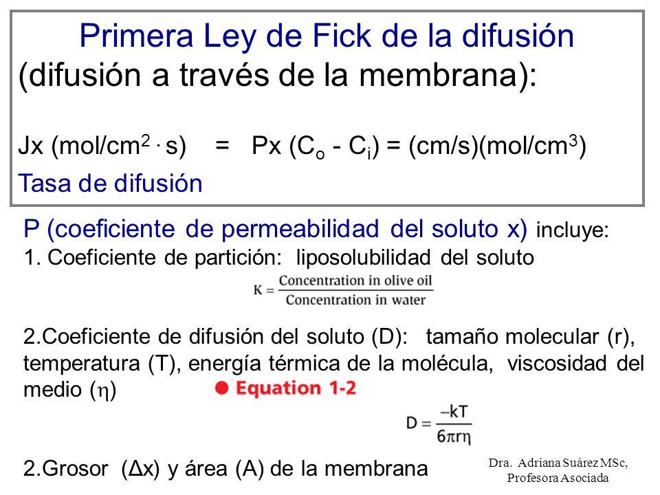 Primera Ley de Fick de la difusión (difusión a través de la membrana):