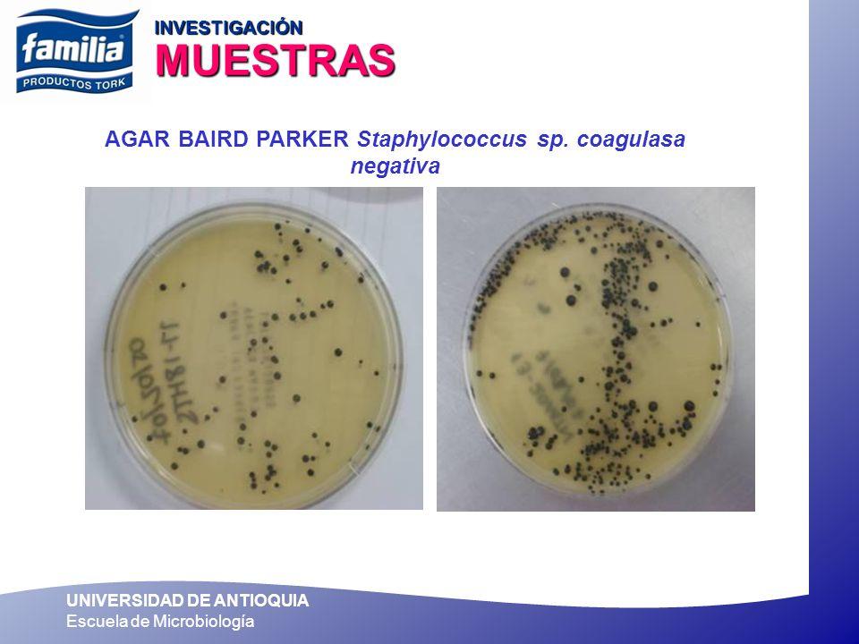 AGAR BAIRD PARKER Staphylococcus sp. coagulasa negativa