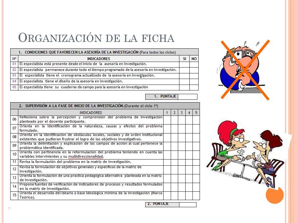 Organización de la ficha