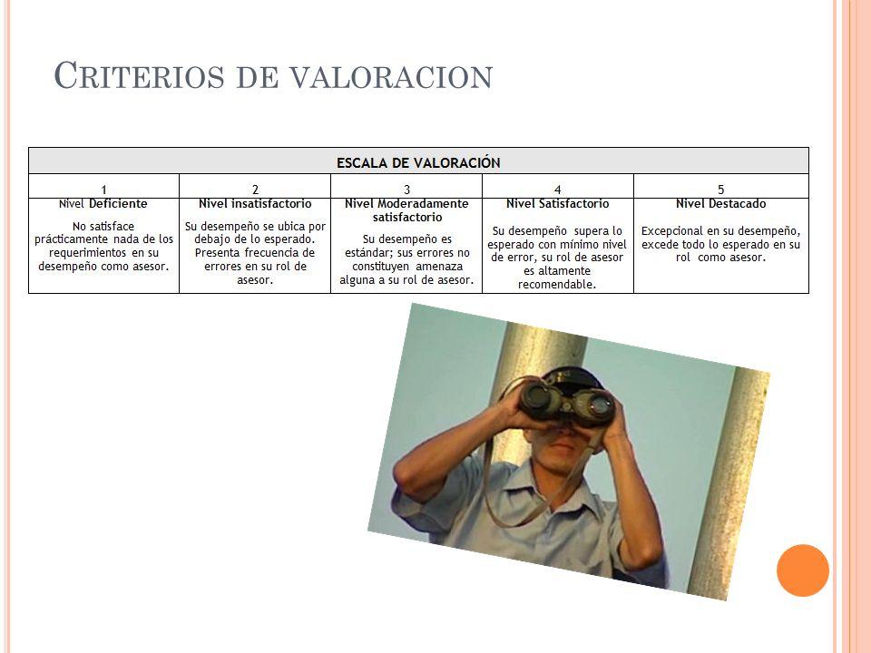 Criterios de valoracion