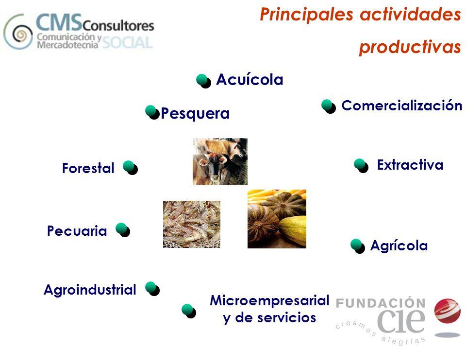 Microempresarial y de servicios