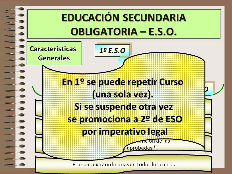 EDUCACIÓN SECUNDARIA OBLIGATORIA – E.S.O.