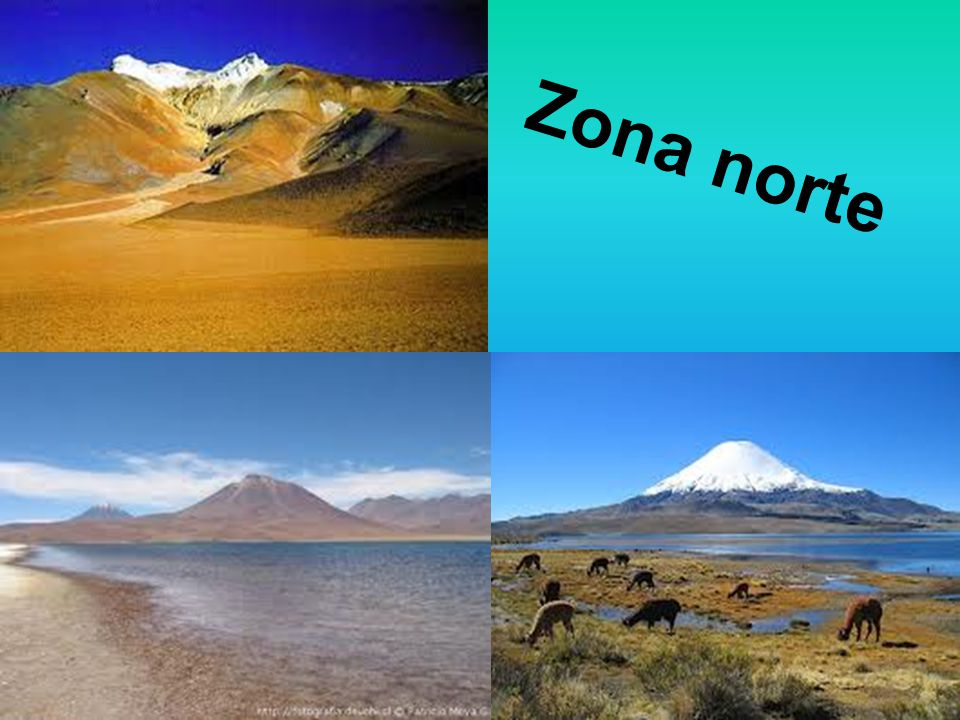 Zona norte ppt video online descargar for Fabrica de sillones zona norte
