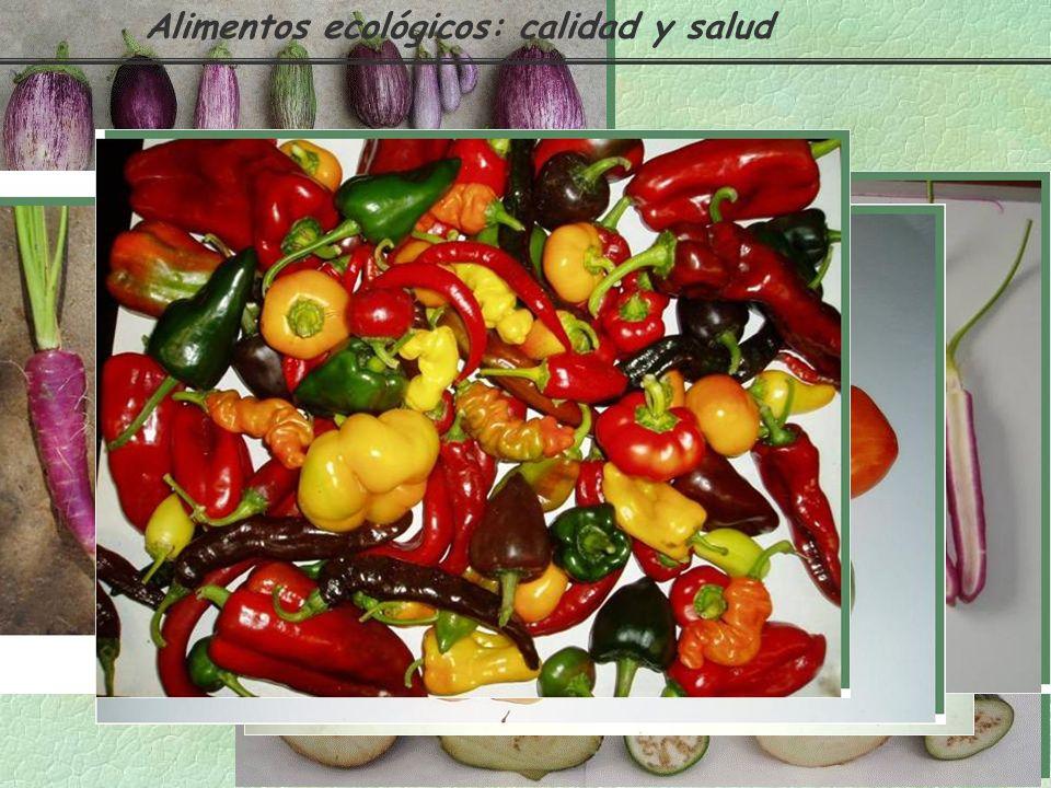 Alimentos ecológicos: calidad y salud
