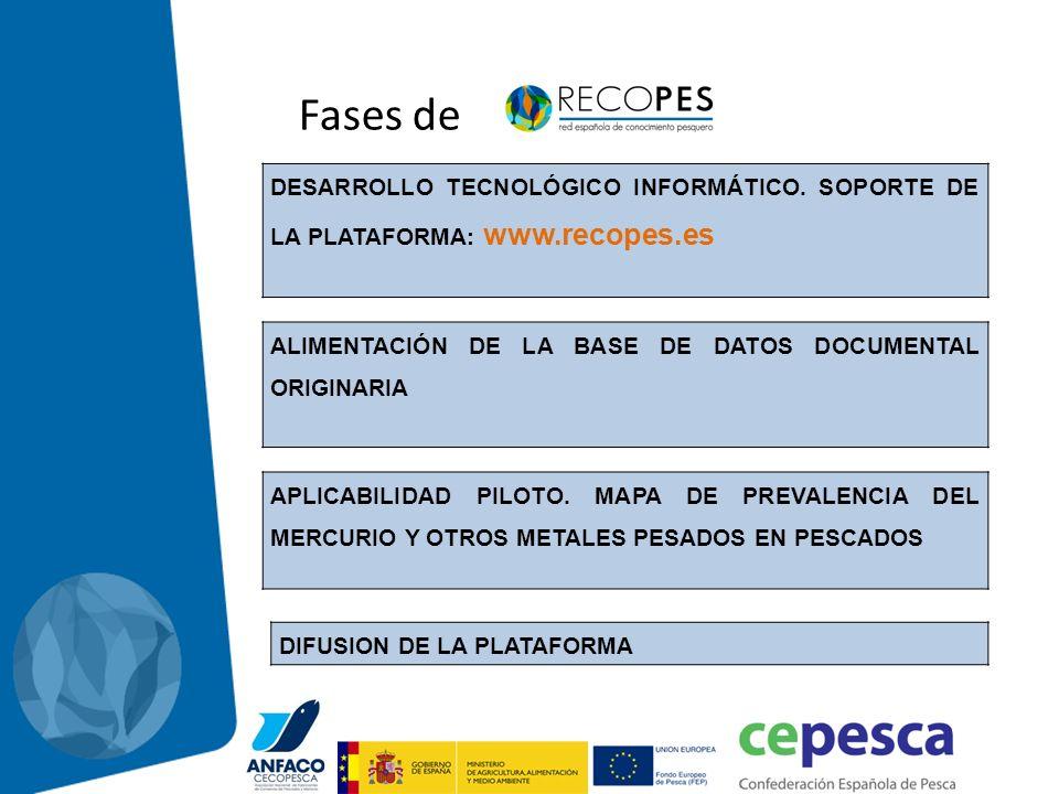 Fases de DESARROLLO TECNOLÓGICO INFORMÁTICO. SOPORTE DE LA PLATAFORMA: www.recopes.es. ALIMENTACIÓN DE LA BASE DE DATOS DOCUMENTAL ORIGINARIA.