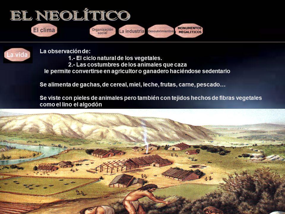 EL NEOLÍTICO La observación de: 1.- El ciclo natural de los vegetales.