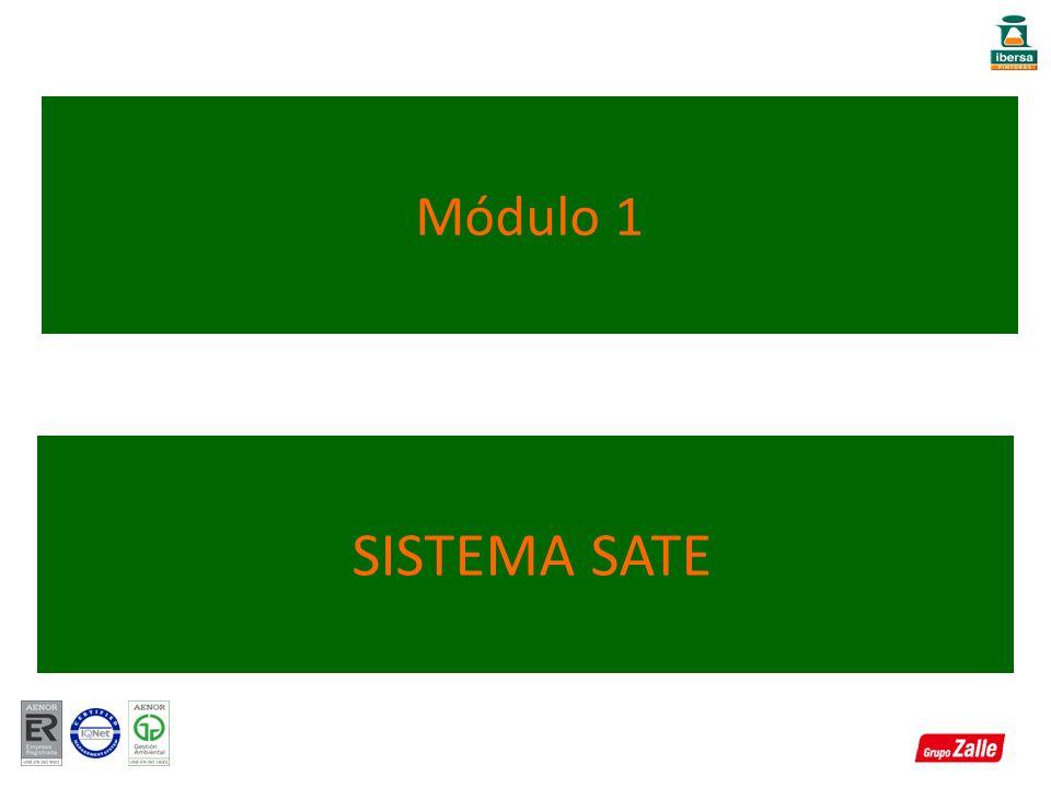 Módulo 1 SISTEMA SATE