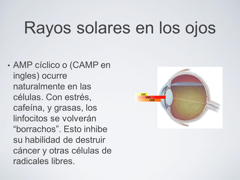 Rayos solares en los ojos