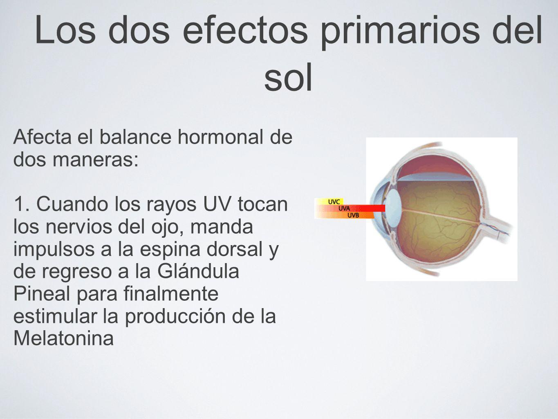 Los dos efectos primarios del sol