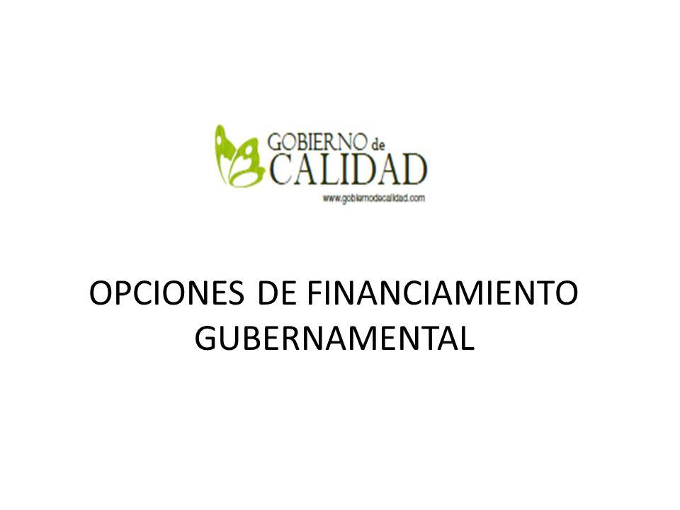 OPCIONES DE FINANCIAMIENTO GUBERNAMENTAL