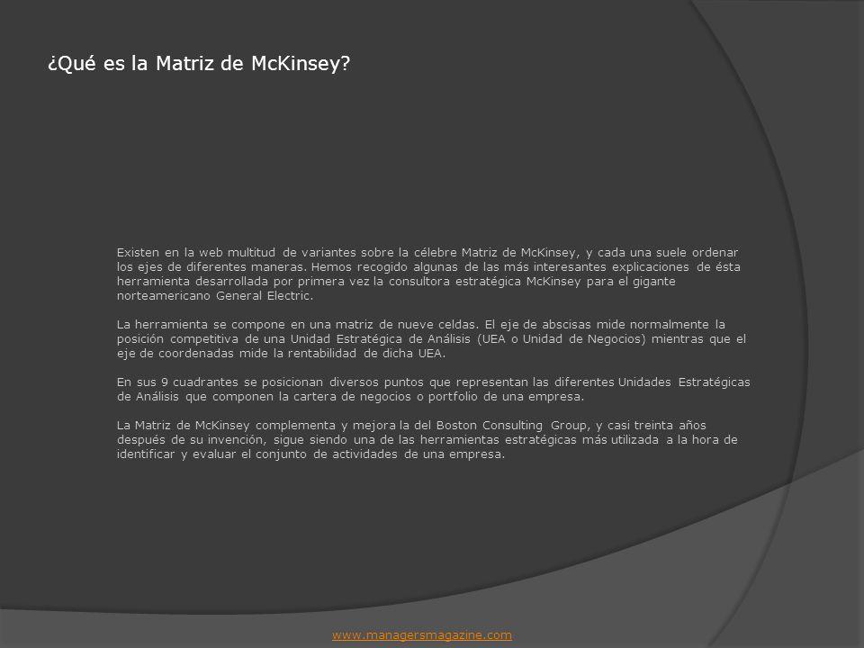 ¿Qué es la Matriz de McKinsey