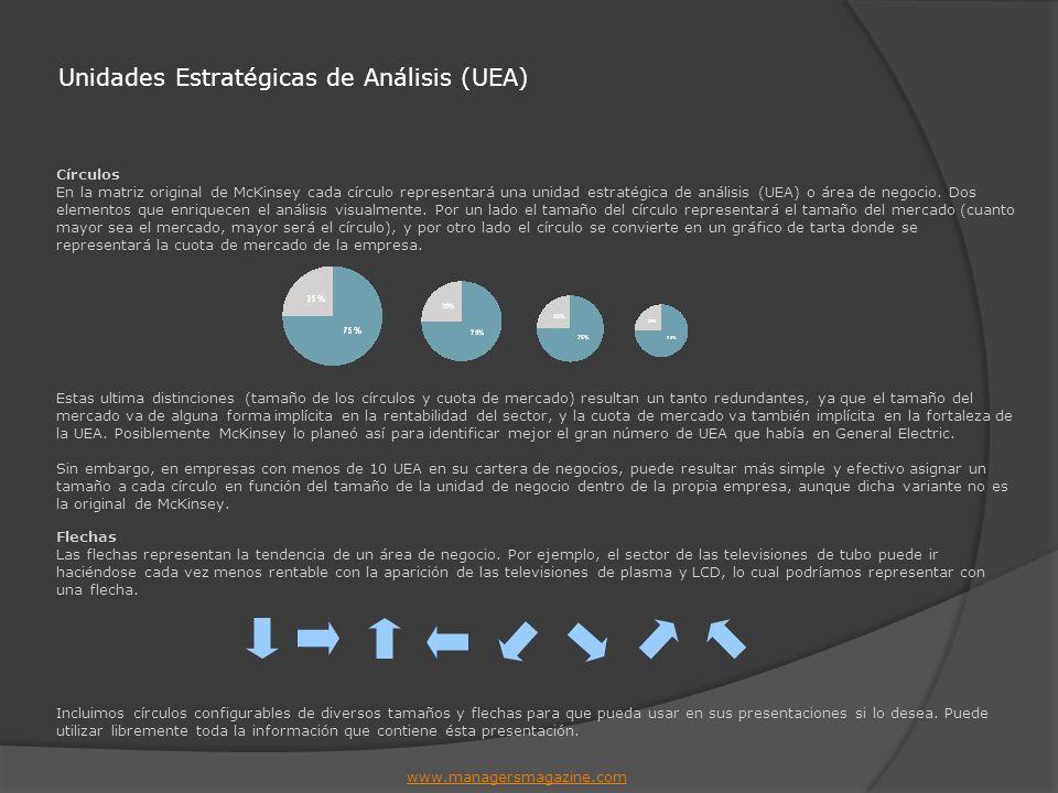 Unidades Estratégicas de Análisis (UEA)