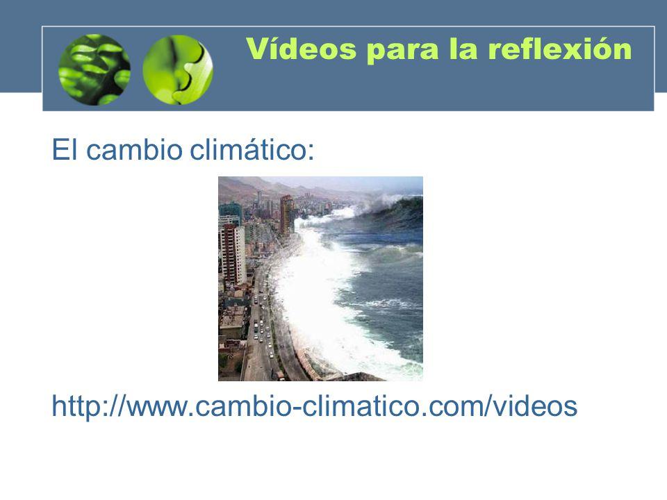 Vídeos para la reflexión