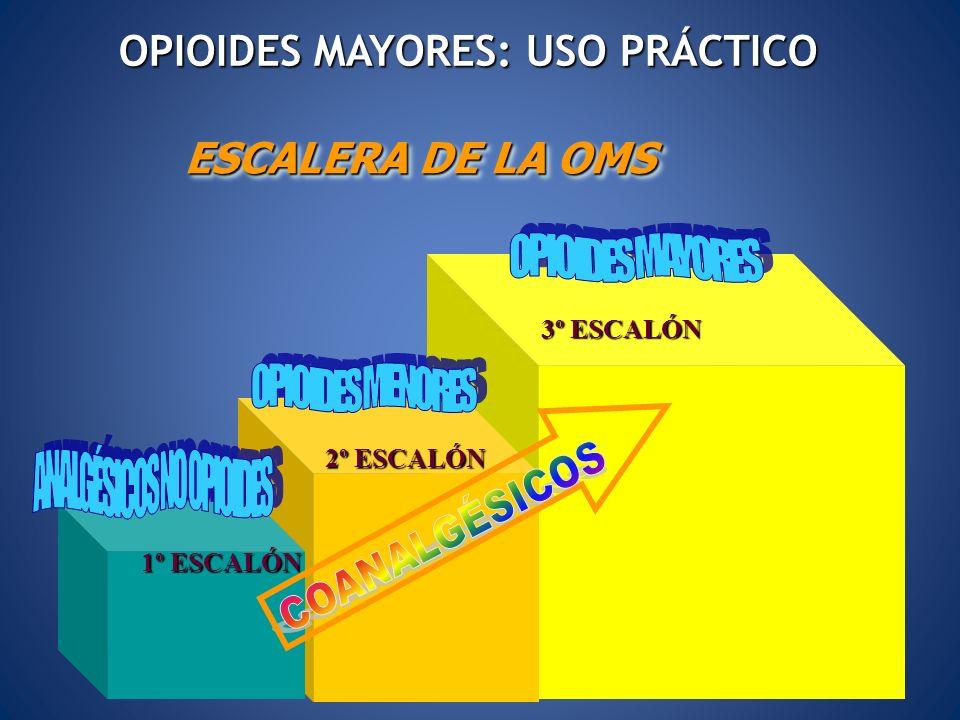 OPIOIDES MAYORES: USO PRÁCTICO ANALGÉSICOS NO OPIOIDES
