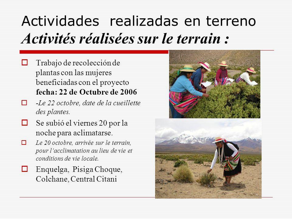Actividades realizadas en terreno Activités réalisées sur le terrain :