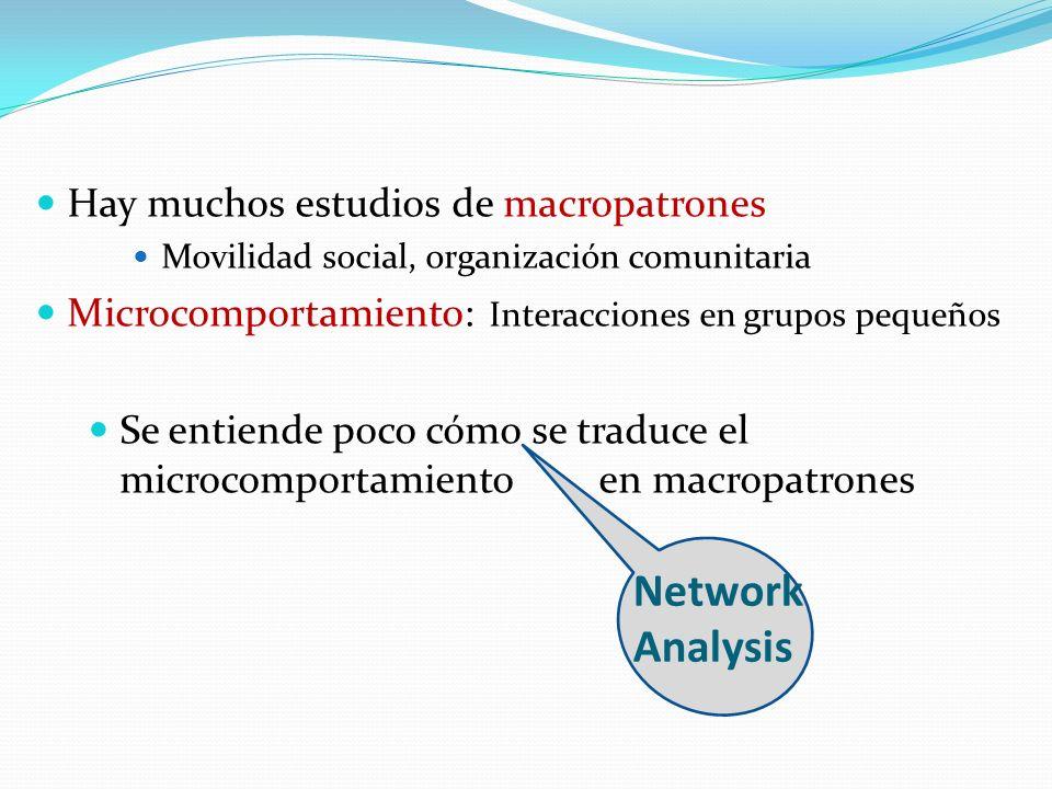 Network Analysis Hay muchos estudios de macropatrones