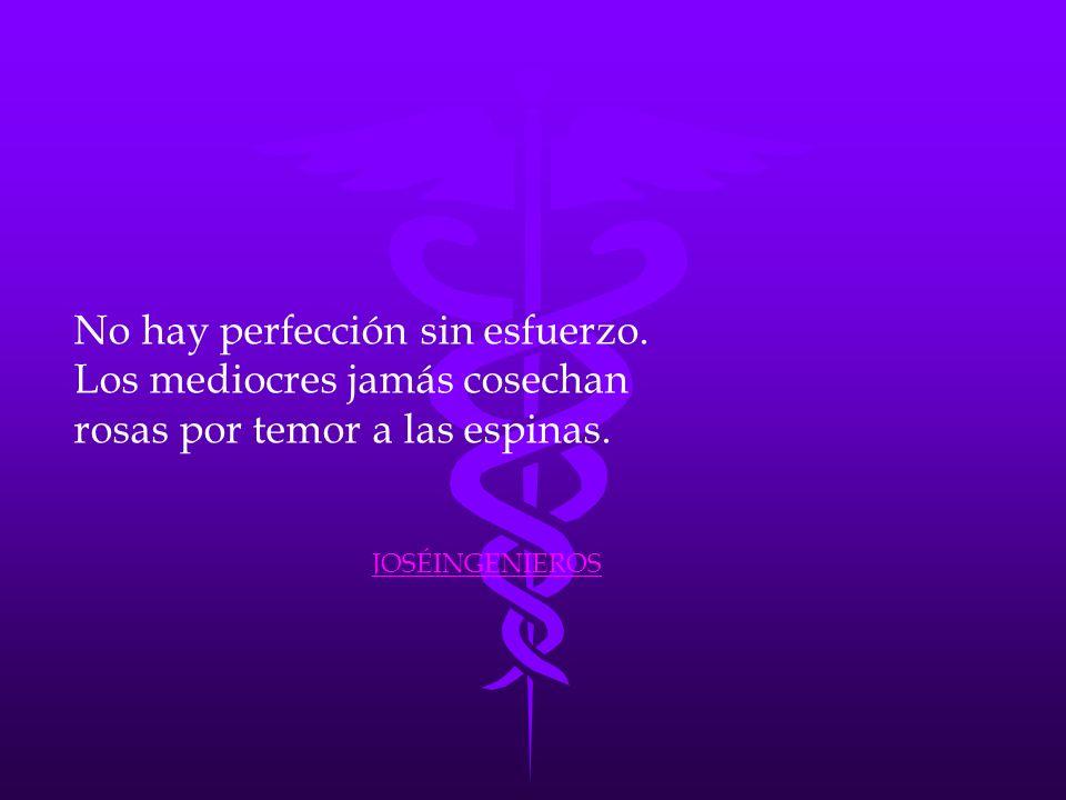 No hay perfección sin esfuerzo