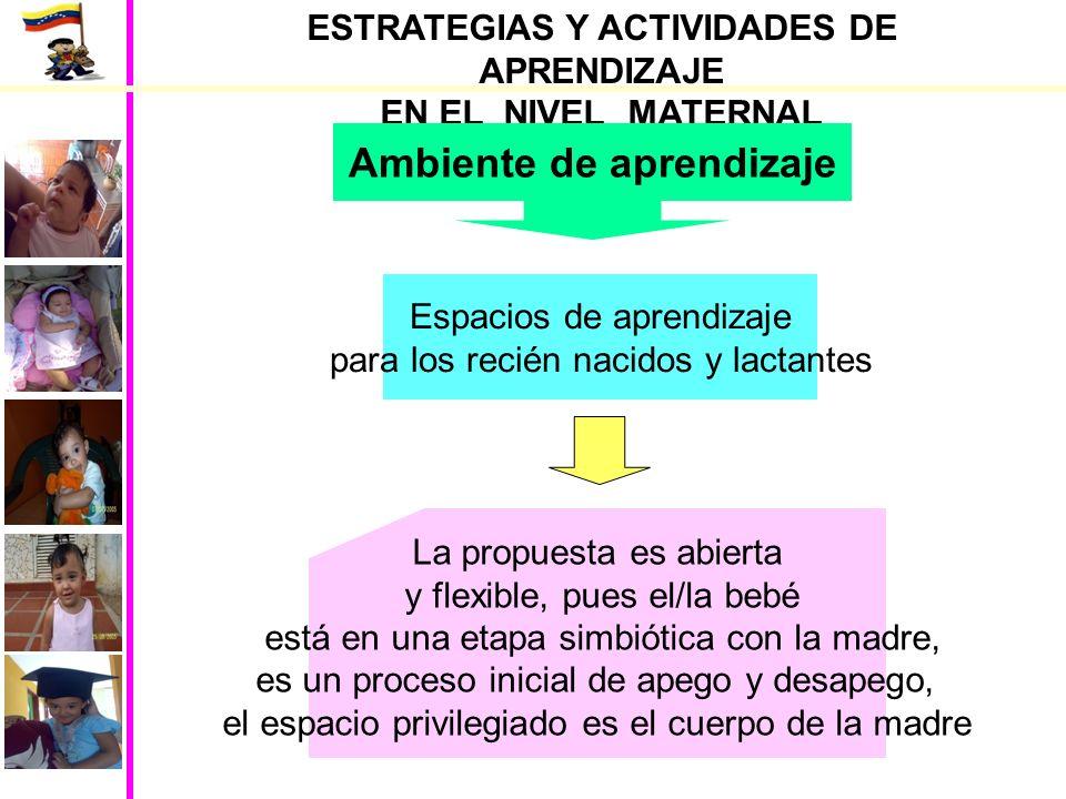 ESTRATEGIAS Y ACTIVIDADES DE APRENDIZAJE Ambiente de aprendizaje