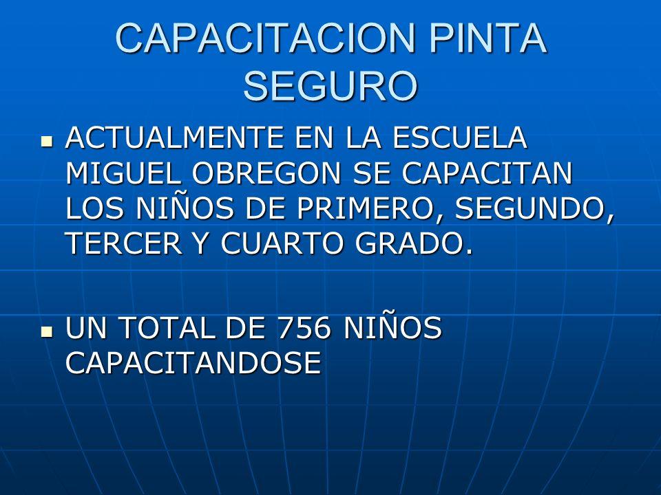CAPACITACION PINTA SEGURO