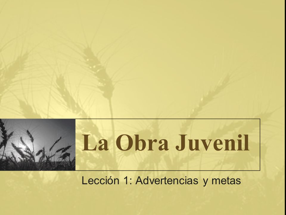 Lección 1: Advertencias y metas