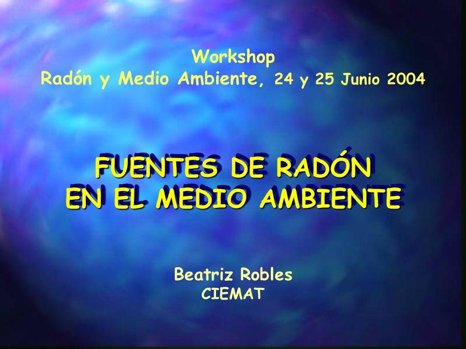 Radón y Medio Ambiente, 24 y 25 Junio 2004