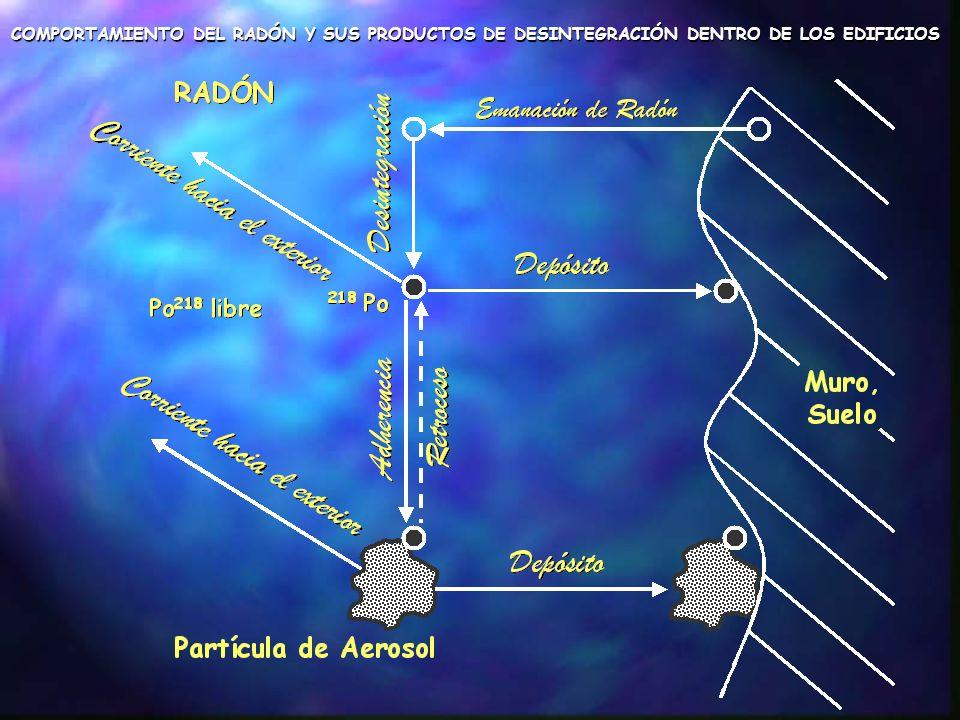 COMPORTAMIENTO DEL RADÓN Y SUS PRODUCTOS DE DESINTEGRACIÓN DENTRO DE LOS EDIFICIOS