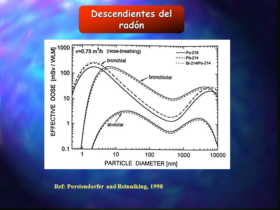 Descendientes del radón