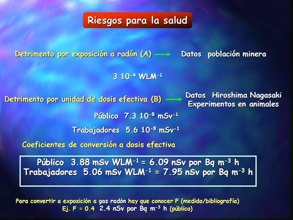 Riesgos para la salud Público 3.88 mSv WLM-1 = 6.09 nSv por Bq m-3 h