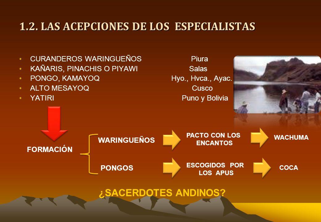 1.2. LAS ACEPCIONES DE LOS ESPECIALISTAS