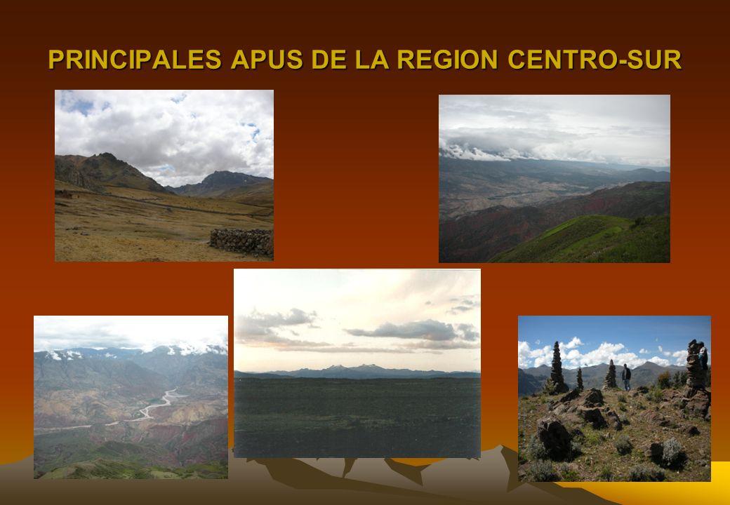 PRINCIPALES APUS DE LA REGION CENTRO-SUR