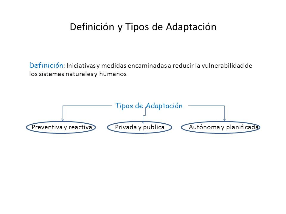Definición y Tipos de Adaptación