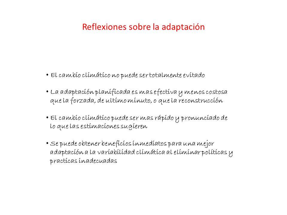 Reflexiones sobre la adaptación
