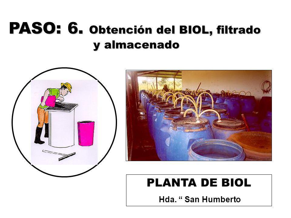 PASO: 6. Obtención del BIOL, filtrado y almacenado