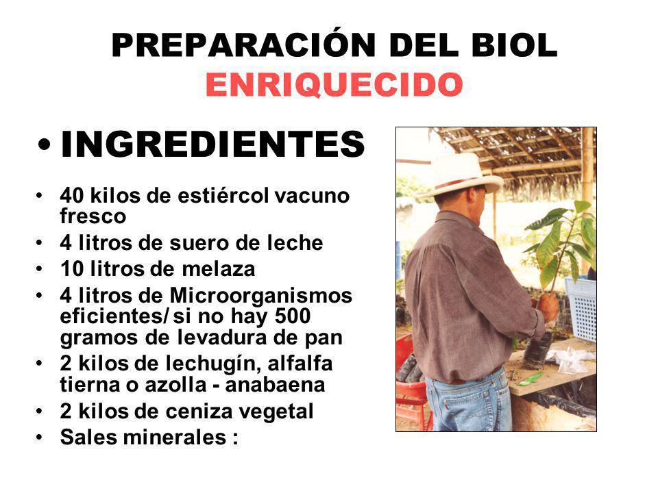 PREPARACIÓN DEL BIOL ENRIQUECIDO