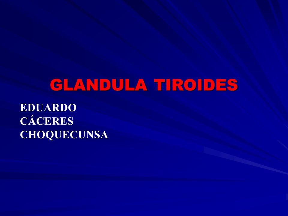 GLANDULA TIROIDES EDUARDO CÁCERES CHOQUECUNSA